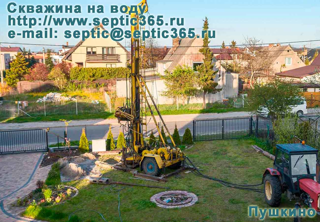 Скважина на воду Пушкино Московская область
